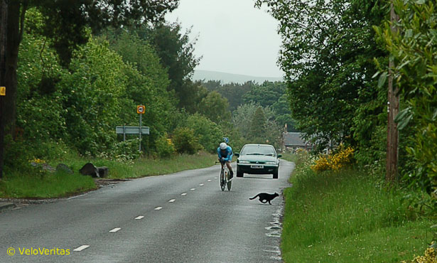 Scottish 50 Mile TT Championships