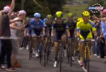 Nibali in Yellow